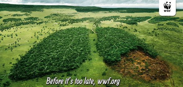 WWF France - Before it's too late