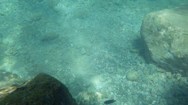 La transparence de l'eau