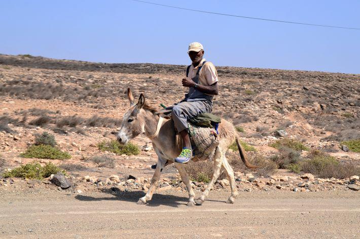 Un boavistais sur son âne