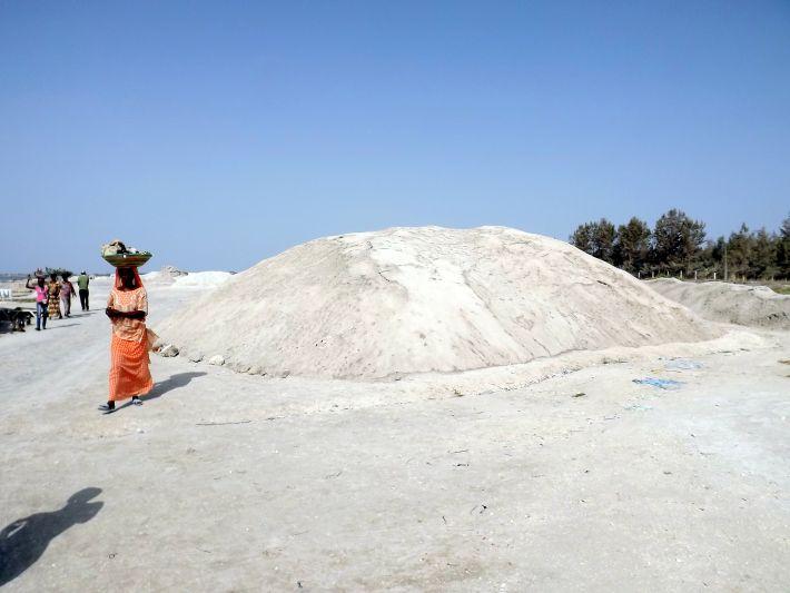 Récolte du sel au lac rose